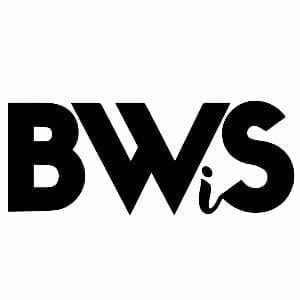 Black women sports business bhm